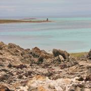 19 mai 2016 - Stintino - littoral et haloclastie