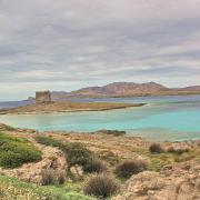 19 mai 2016 - Stintino - littoral, Torre de la Finanza, Isola Asinara - 6
