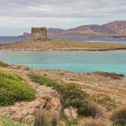 19 mai 2016 - Stintino - littoral, Torre de la Finanza, Isola Asinara