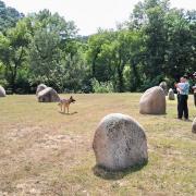 Jardin des 9 Demoiselles - chien