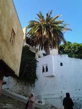 Tanger (77)